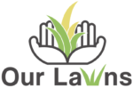 Our Lawns Landscaping | Lawn Service and Pressure Washing