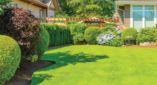 Lawn Care Ponce Inlet