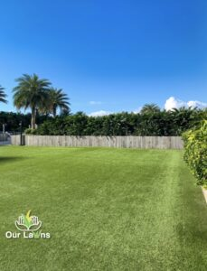 Mowing Service in Port Orange